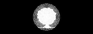 fundoarvore