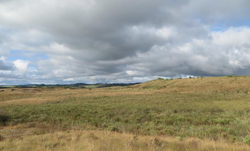 nos-campos-de-palmas-serao-instaladas-100-torres-com-150-metros-de-altura