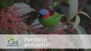 capa-portfolio-cia-ambeintal